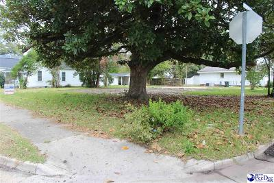 Residential Lots & Land For Sale: 424 N Main Street