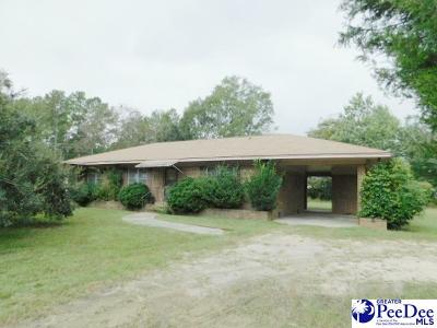 Latta Single Family Home For Sale: 511 Lucky Run