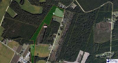 Lake City Residential Lots & Land Uc/Show For Back Up: McCutcheon Road
