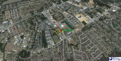 Florence, Flrorence, Marion, Pamplico Commercial Lots & Land New: 6 Acres Celebration Blvd