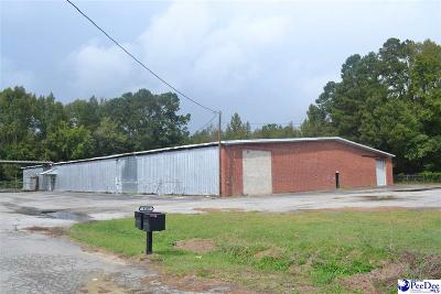 Dillon County Commercial For Sale: 1107 Martin Luther King Jr Blvd.