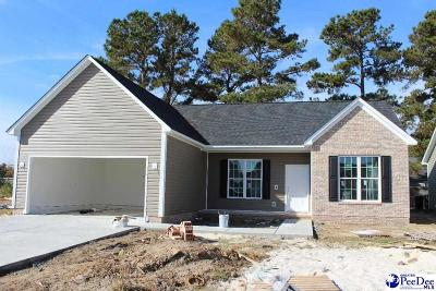 Florence County Single Family Home For Sale: 3005 Red Berry Circle