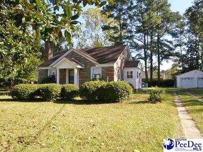Johnsonville Single Family Home For Sale: 144 N Georgetown Highway