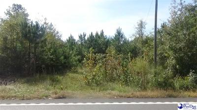 Florence SC Residential Lots & Land For Sale: $30,000