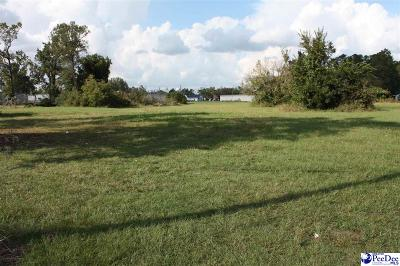 Lake City Residential Lots & Land Uc/Show For Back Up: Lattimore Street