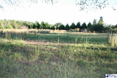 Marion County Residential Lots & Land For Sale: Sun Valley Court