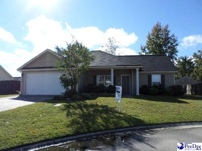 Effingham Single Family Home Uc/Show For Back Up: 2925 Paving Stone Court