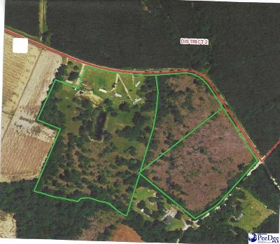Scranton SC Residential Lots & Land For Sale: $94,000