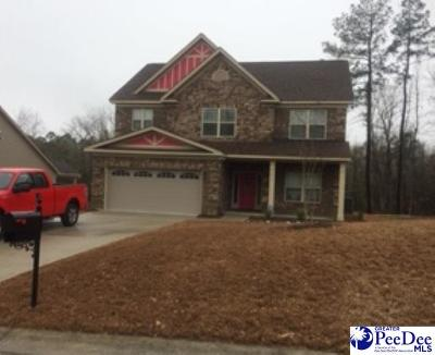 Florence County Single Family Home For Sale: 975 Took Place