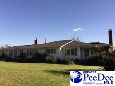 Effingham SC Single Family Home For Sale: $199,900