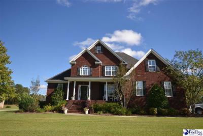 Florence Single Family Home For Sale: 3325 Shadow Creek