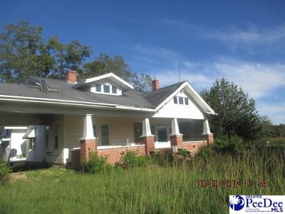 Dillon County Single Family Home For Sale: 2112 Gaddys Mill Road