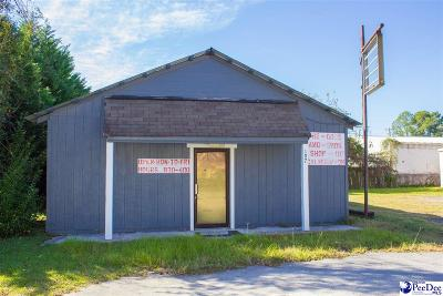 Florence, Flrorence, Marion, Pamplico Commercial For Sale: 107 S Calhoun Drive