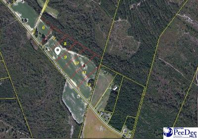 Johnsonville Residential Lots & Land For Sale: 2nd Neck Road