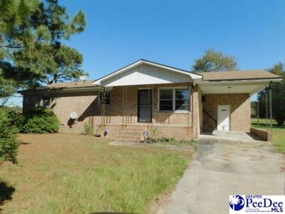 Timmonsville Single Family Home For Sale: 1056 Piney Grove Road