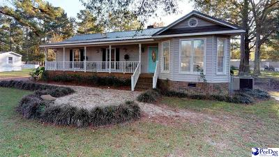 Effingham Single Family Home For Sale: 2370 S Point Road
