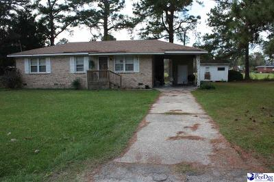 Lake City Single Family Home Uc/Show For Back Up: 214 Holly Street