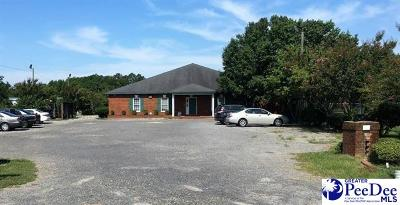 Florence, Flrorence, Marion, Pamplico Commercial For Sale: 3116 Sally Hill Road
