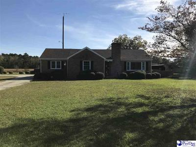 Darlington Single Family Home For Sale: 3317 Timmonsville Hwy