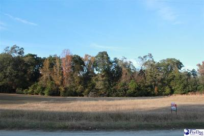 Florence Residential Lots & Land For Sale: 2864 Cobblestone St.
