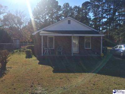 Darlington Single Family Home For Sale: 421 Spring St
