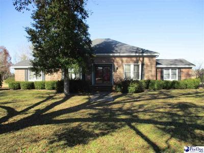 Scranton Single Family Home For Sale: 1175 E Myrtle Beach Hwy