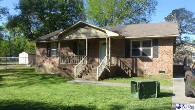 Darlington Single Family Home For Sale: 126 Coker