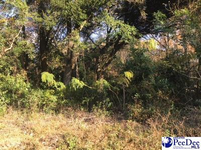 Florence Residential Lots & Land For Sale: 126 N Cromwell