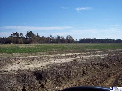 Latta SC Residential Lots & Land For Sale: $495,000