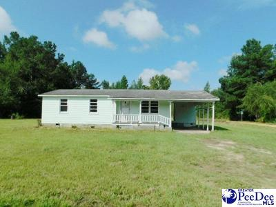 Florence Single Family Home For Sale: 6002 Pamplico Hwy