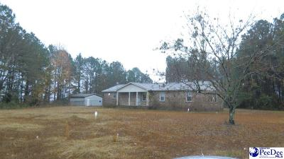 Darlington Single Family Home For Sale: 2049 E Seven Pines Street