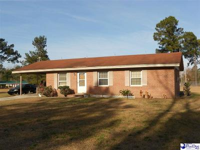 Johnsonville Single Family Home For Sale: 455 Diamond Branch Rd.