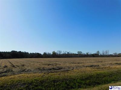 Timmonsville Residential Lots & Land For Sale: 809 Timmons Road