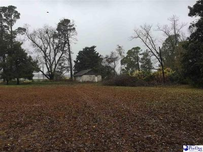 Residential Lots & Land Sold: 269 S Georgetown Hwy