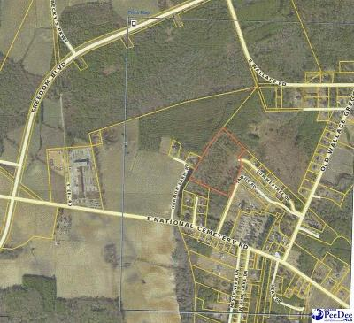 Darlington, Effingham, Florence, Flrorence Residential Lots & Land For Sale: Summertree Subdivision