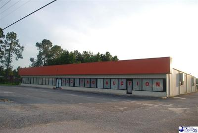 Florence, Flrorence, Marion, Pamplico Commercial For Sale: 4105 S Irby Street