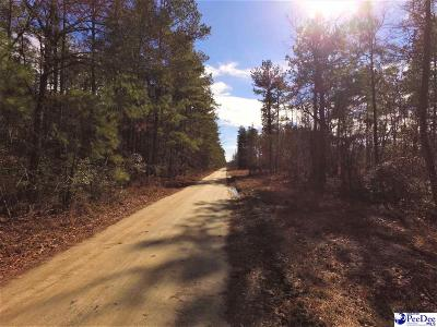 Pamplico Residential Lots & Land For Sale: Harden Rd/Hwy 893
