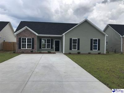 Effingham Single Family Home For Sale: 3002 Red Berry Circle
