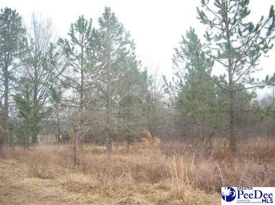 Hartsville SC Residential Lots & Land Active-Price Change: $57,500