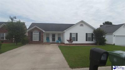 Effingham Single Family Home Active-Price Change: 3053 Red Berry Circle