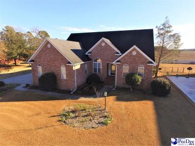 Florence Single Family Home For Sale: 3326 Lakeshore Drive