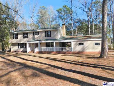 Darlington Single Family Home For Sale: 124 Alabama Drive