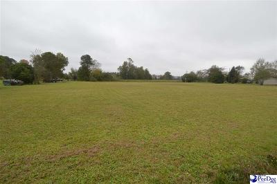 Residential Lots & Land For Sale: Lot 5 & 6 E Lydia Highway