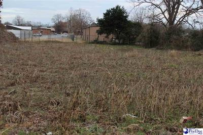 Residential Lots & Land For Sale: Tract 4 Lot On South 6th St.