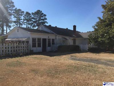 Darlington Single Family Home For Sale: 1653 Indian Branch Rd