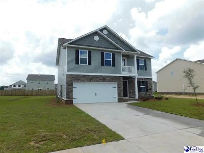 Effingham SC Single Family Home For Sale: $193,975