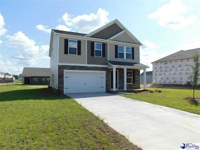 Effingham SC Single Family Home For Sale: $198,792