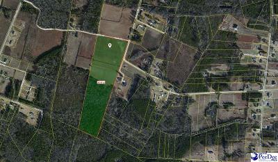 Darlington, Effingham, Florence, Flrorence Residential Lots & Land For Sale: Ballpark Road