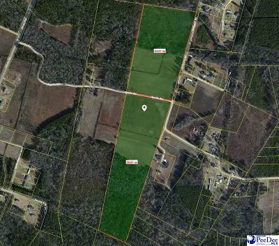 Darlington, Effingham, Florence, Flrorence Residential Lots & Land Uc/Show For Back Up: Ballpark Road