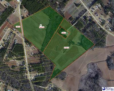 Darlington, Effingham, Florence, Flrorence Residential Lots & Land For Sale: Meadow Prong Road